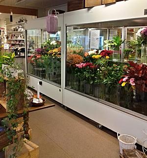Blomsterbutiken Junsele