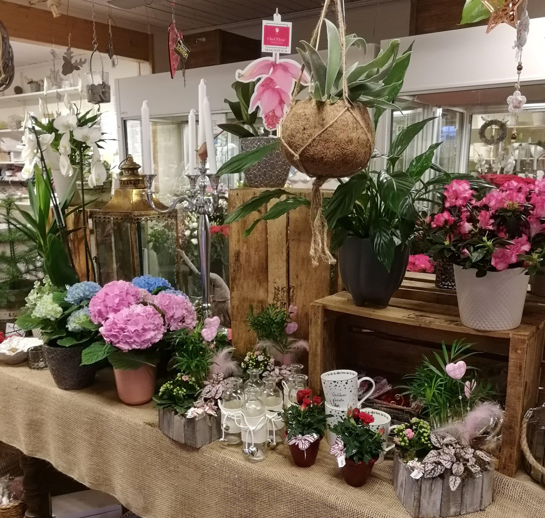Junsele blomsterbutkik