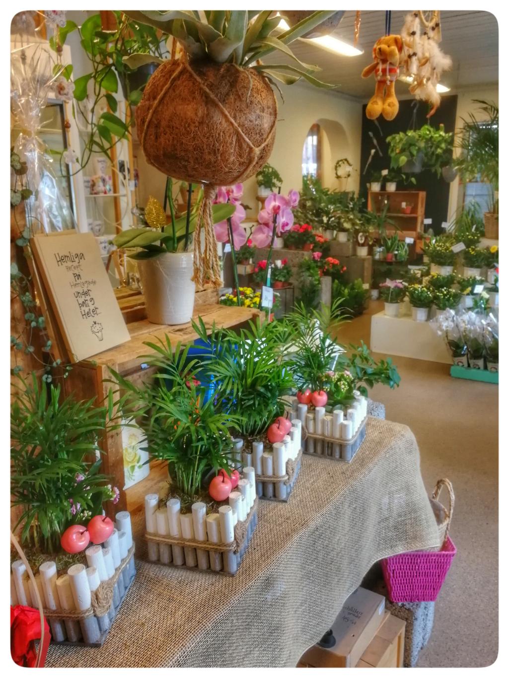 Junsele blomsterbutik.